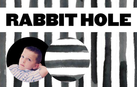rabbit-jpeg-1-768x490