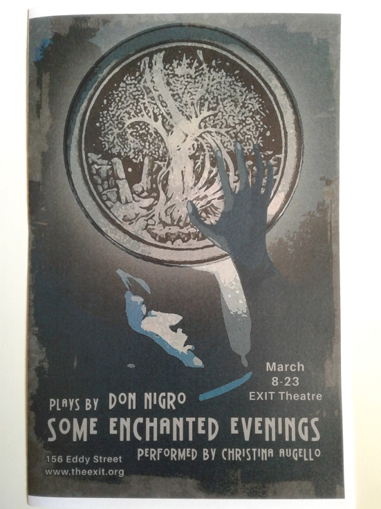 Some Enchanted Evenings world premiere by The EXIT - programme