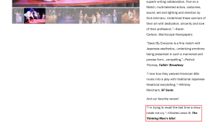 My blurb on Five on a Match's website - Seen-By Everyone